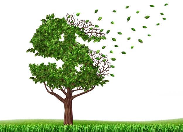 money tree virtual bean counters